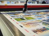 Soft Signage - Print & Cut on Textiles