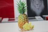 Digital Finishing - Print&Cut Display
