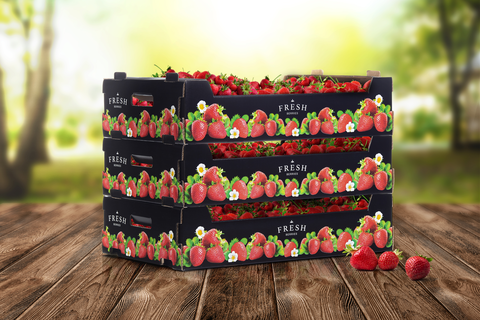Fresh berries tray WKL